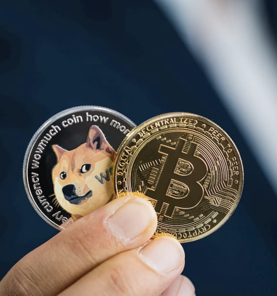 Coinbase Founder Advises about Meme Coins' Profitability