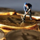 ostly Machines, Power Outage Hinder Venezuela Crypto Mining Boom