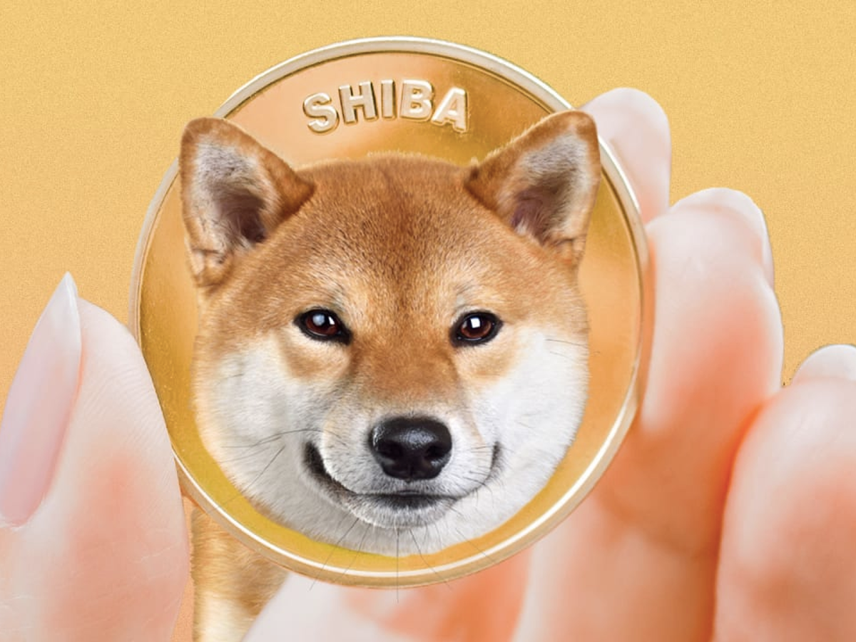 Shiba Inu's Market Capitalization Crosses US$13-B Line